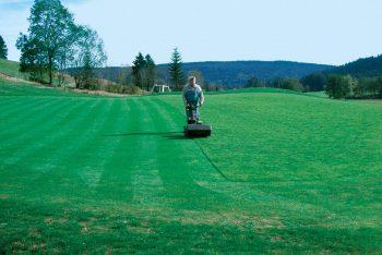 Fachmännische Grünflächenpflege