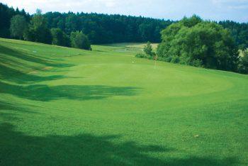 Golfcourt am Waldrand