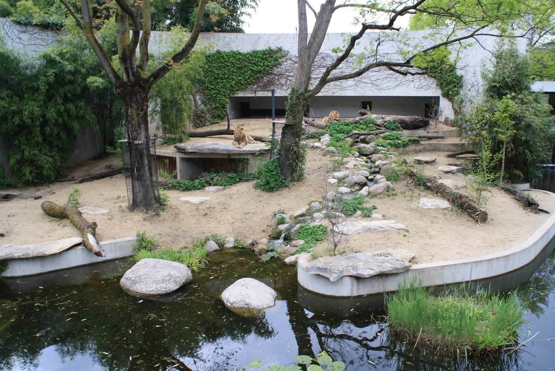 Zoo Außenanlage