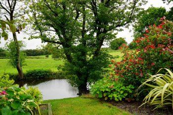 Idyllischer Garten mit See