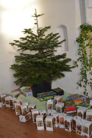 Mit den Geldspenden der Woringer Kinder unterstützt Brot für die Welt die Aufforstung von Kirchenwäldern in Äthiopien. Foto: Kindergarten Guter Hirte